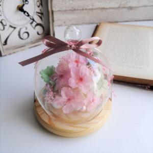 桜のガラスドームアレンジメント