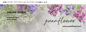 yunaflower