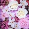 桜のプリザーブドフラワー